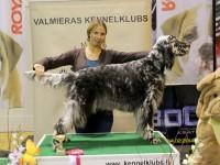 22-23.02: Tulemused Valmiera koertenäituselt